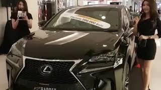 New 2019 Lexus NX300H F-Sport Series1 Black Edition   Redline Review