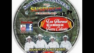 MI ULTIMO DESEO--Apolinar Villanueva Y Los Suspiros De Huetamo mich.