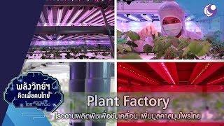 plant-factory-โรงงานผลิตพืชเพิ่มมูลค่า-19มิ-ย-62-พลังวิทย์ฯ-คิดเพื่อคนไทย-9-mcot-hd
