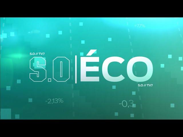 SO ÉCO - Comment et à quel prix les entreprises peuvent elles réduire leur empreinte carbone ?