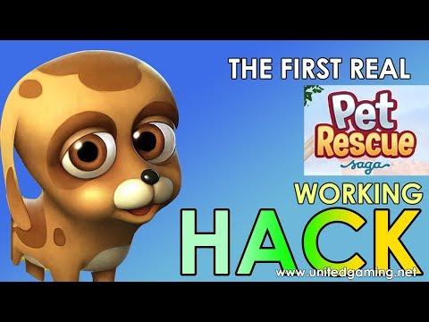 Pet Rescue Saga Hack - Gold Bars, Coins and Lives Cheats