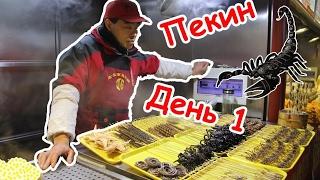✈ VLOG #1: КИТАЙ || ПЕКИН || Парк Бейхай || Утка по-пекински || Жареный скорпион 🦂