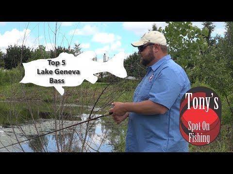 Top 5 Lake Geneva Bass Baits