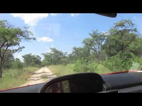 Game Drive Matobo National Park Zimbabwe