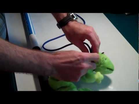 Squishy Face Studio Flirt Pole Dog Exercise Toy Knot