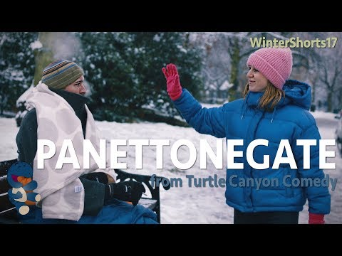 PanettoneGate  a Christmas True Story