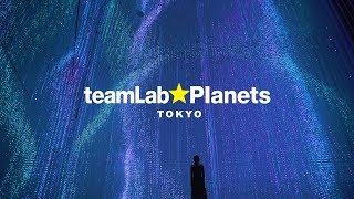 teamLab Planets TOKYO / チームラボ プラネッツ TOKYO DMM.com