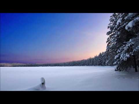 Vivaldi Winter | Ringtones for Android | Classical Music Ringtones