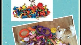 Все игрушки моих собак (Очень много)
