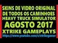 Skin parabrisa Vidros originais Heavy Truck HTS