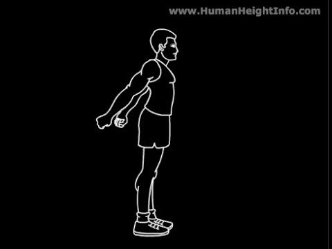 How to Grow Taller - Stretching Exercises to Increase Height