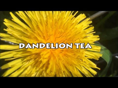 "Diabetes killer ""Dandelion Tea"" HD"