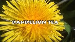 hqdefault - Dandelion Benefits Diabetes