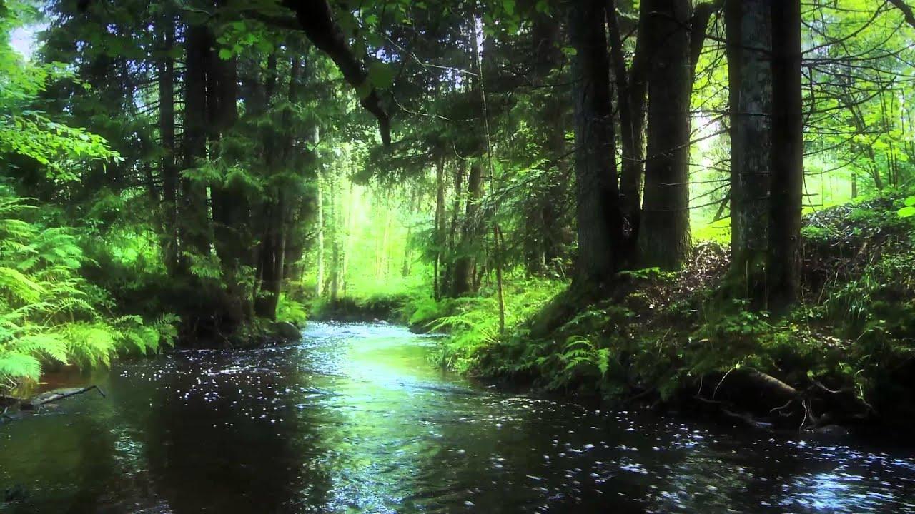 ainavas latvijas laukos landscape
