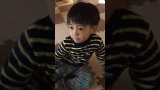 カンカンはパパが大好き.