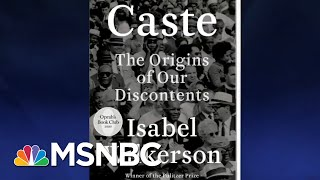 The Caste System In America | The Last Word | MSNBC