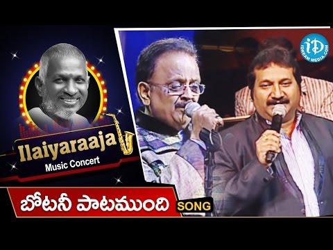 Botany Patamundhi Song - Maestro Ilaiyaraaja Music Concert 2013 - Telugu - New Jersey, USA