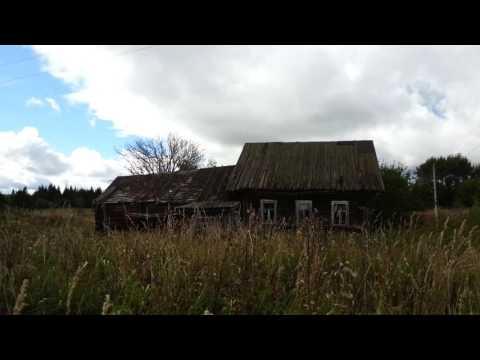 Заброшенная деревня Белозерский район