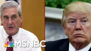 The Mueller Report Is Here: Who Were The Guardrails Inside The White House? | Deadline | MSNBC