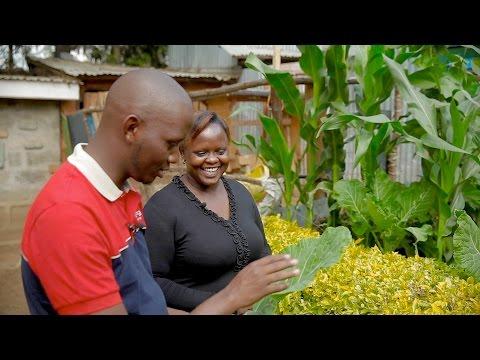 Integrated Farming - Seeds Of Gold TV Season 1 Episode 3 | Kenya 2015