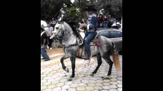 14 de Septiembre Día del charro en TEUCHITLAN JALISCO 2014 1/2