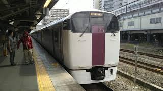 JR東日本 215系 NL-2編成 10両編成  ホリデー快速ビューやまなし号 小淵沢行  高尾駅 4番線を発車