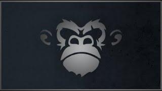 APES | AQ Speedrun (34:37)
