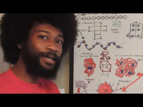 PROTEIN, IRON, & DNA- The KT The Arch Degree Explanation