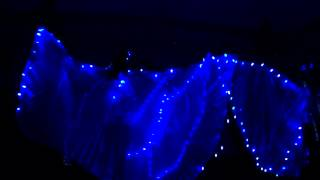 Shimmyfest 2012, Blue LED lights Isis Wings, Belly Dance