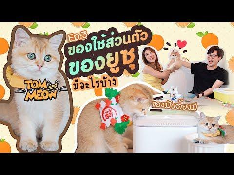 Tom and Meow | EP.3 | ของใช้ส่วนตัวของยูซุ