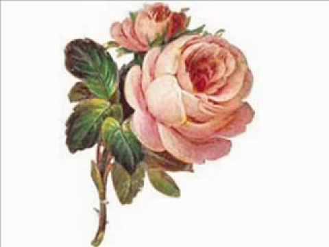 A Rosa - Uma homenagem às mulheres