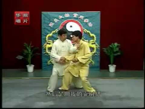 Beijing Chen style Tai Chi 2nd routine 1/2