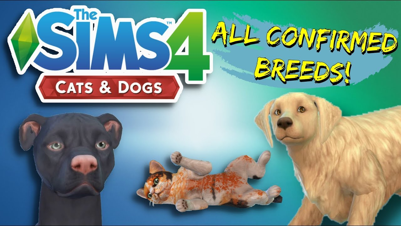The Full List Of Breeds In The Sims 4 Cats And Dogs Youtube