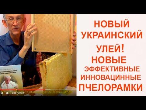 Пчеловодство в Украине: Инновационные Пчелорамки Василия Приятеленко, Kiev, Ukraine