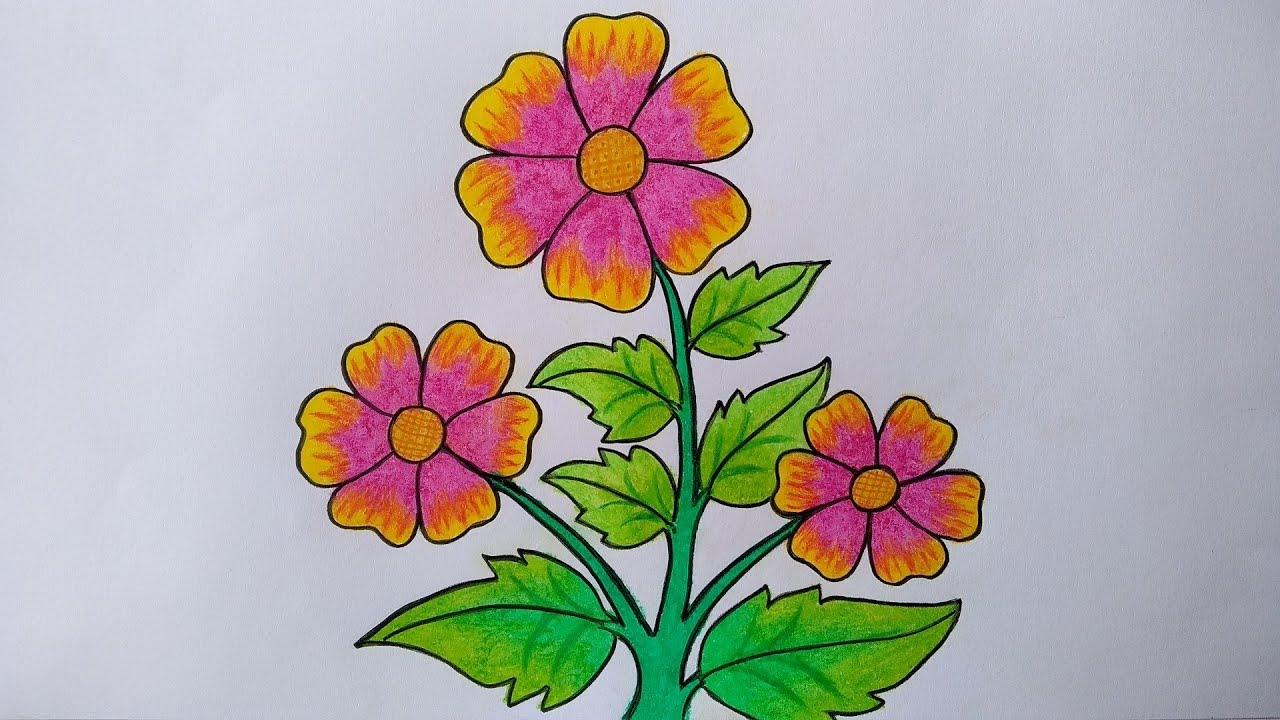 Cara Menggambar Bunga Yang Mudah Menggambar Dan Mewarnai Bunga Untuk Pemula Youtube