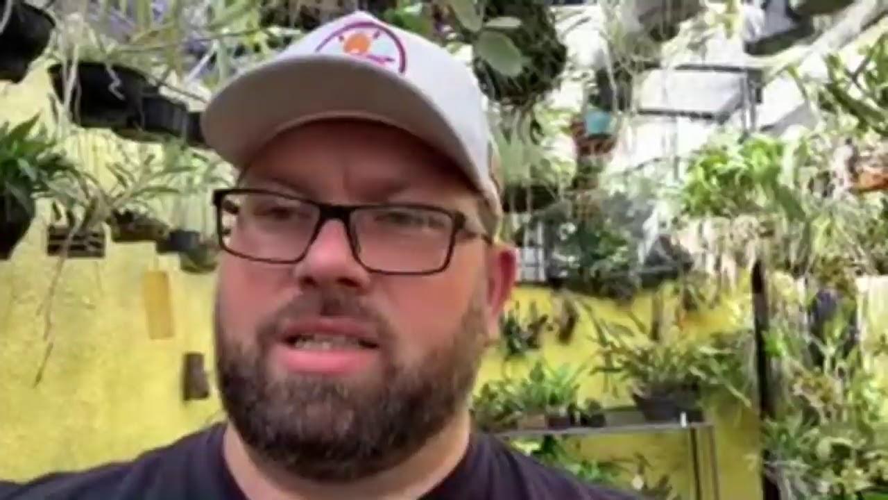 Dicas para comprar orquídeas pela internet, e tour no orquidário