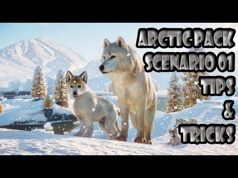 PLANET ZOO ARCTIC PACK DLC CAREER MODE SCENARIO 01 TIPS & TRICKS |