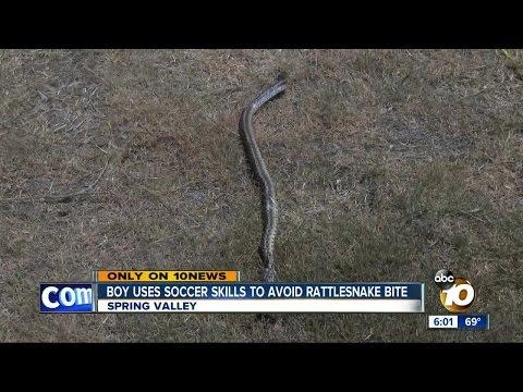 Boy uses soccer skills to avoid rattlesnake bite