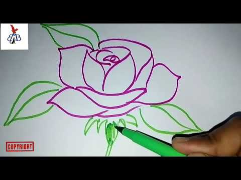 Draw Rose | Step by Step| (Part - 3)
