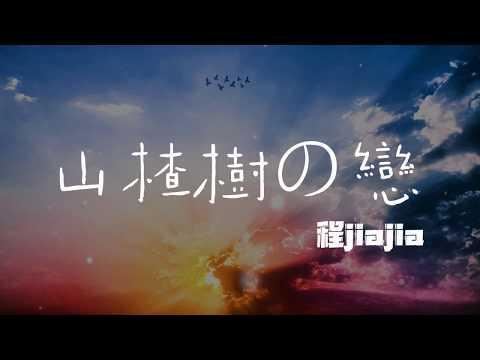 抖音 程jiajia - 山楂樹之戀(女声) ♬『我的山楂树之恋 永远站在你的身边』《動態歌詞Lyrics》
