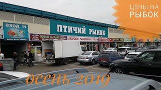 Птичий рынок Москвы: павильон аквариумистики. Цены. (осень 2019)