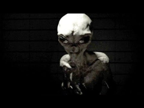 Simulation Of A Human Interviewing A Hyper-Evolved Alien!