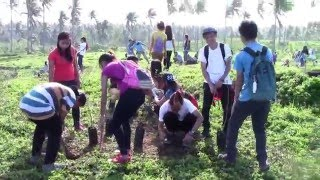 NSTP-2   2016  TREE  PLANTING ACTIVITY (part2 video)