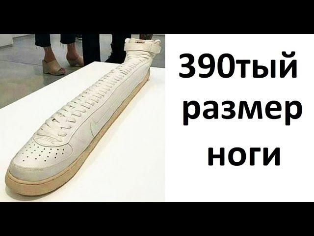 Лютые приколы. 390тый размер ноги