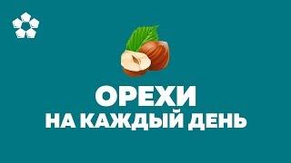 Полезные Орехи, которые нужно есть каждый день