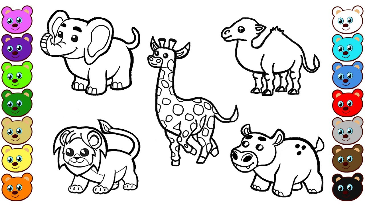 learn colors for children with african animals coloring pages