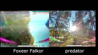 Сравнение камер в лесу Foxeer Falkor vs Foxeer Predator v2