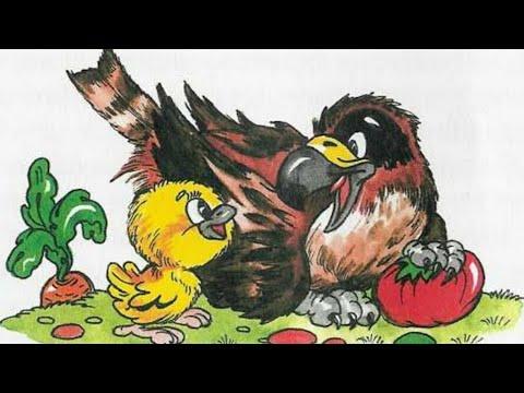 Сказка про птиц и не только