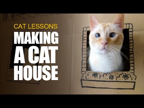 How to Make a Cardboard House for Cats