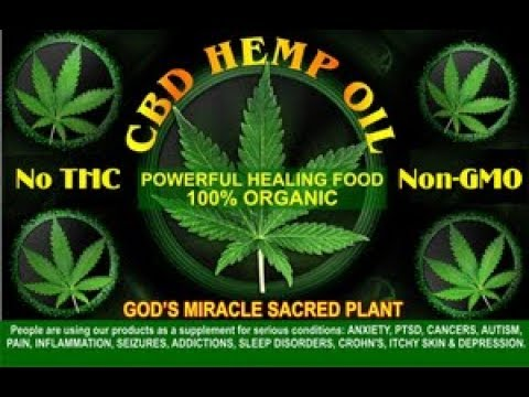 Breaking News About CTFO Hemp Oil (CBD ) Business